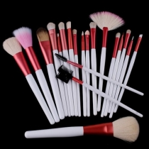 Professional Beauty 20 PCS Cosmetic Makeup Brushes Set with Pink Pouch