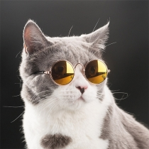 Retro Style Round Frame Sunglasses for Pets